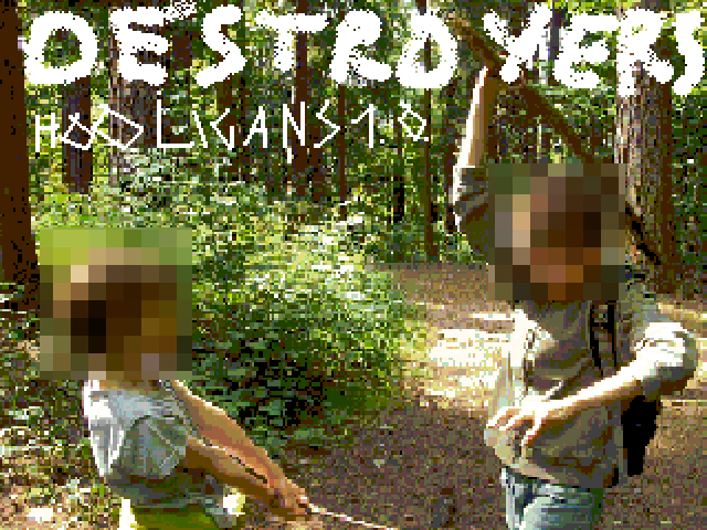 Destroyers Hooligans
